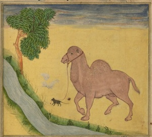 Rumi The Camel and the Mouse1
